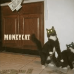 What do you know about MoneyCat?